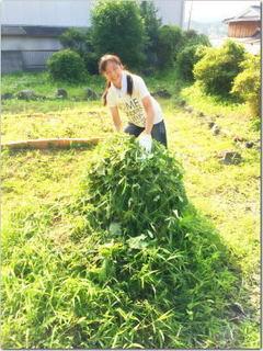 怒涛の草刈りと父の日☆