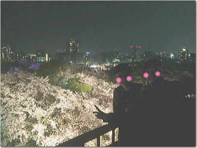最高の夜桜☆福岡城最上部天守台から!遂に有料エリアに突撃!!超☆素敵!満満開の夜桜達〜♪