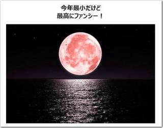 今宵はストロベリームーン!?お月様がピンク色に!?見逃すな〜☆
