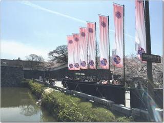 福岡城址でお花見ー☆