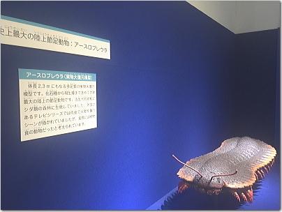 tobatai63.jpg