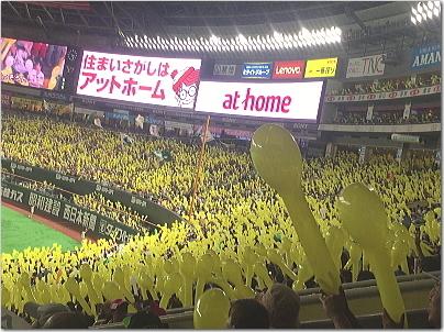 yakudo13.jpg